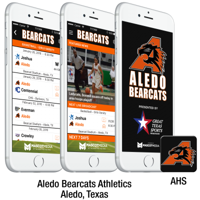 3screen-icon-aledo-website